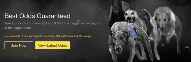 east anglian greyhound derby 2021 betting websites