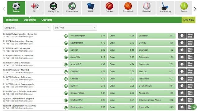 Epl betting sites fish binary options